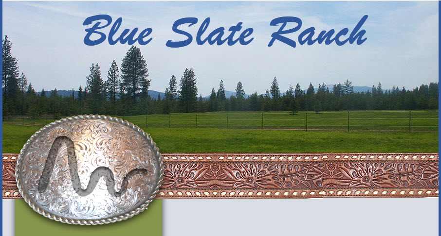 Blue Slate Ranch Banner